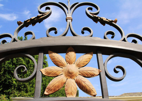 close up of wrought iron gate accented with tropical gold flowers and leaves