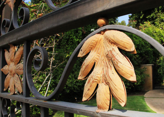side close up of wrought iron gate accented with tropical gold flowers and leaves